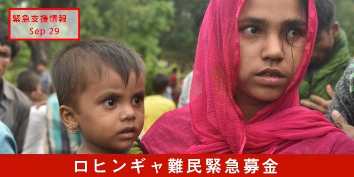 ロヒンギャ難民緊急募金