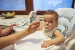 離乳食を食べるセルビアの生後10カ月のマルコちゃん。(2019年9月撮影)