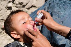 アフガニスタン・カンダハールでポリオの予防接種を受ける子ども。(2020年3月8日撮影)
