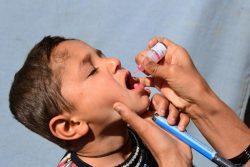 南部カンダハールでポリオの予防接種を受ける子ども。(アフガニスタン、2020年3月8日撮影)