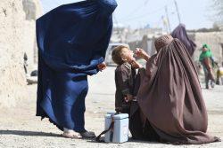 カンダハールでポリオの予防接種を受ける子ども。(アフガニスタン、2020年3月8日撮影)
