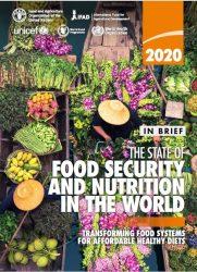 2020年版「世界の食料安全保障と栄養の現状」報告書(原題:2020 The State of Food Security and Nutrition in the World)