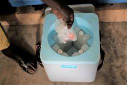 保冷箱からワクチンを取り出す様子。(南スーダン、2020年10月8日撮影)