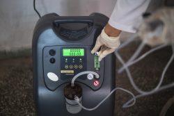 ガーズィヤーバード州にある保健センターで、ユニセフなどが支援した酸素濃縮器を操作する医療従事者。(2021年5月25日撮影)