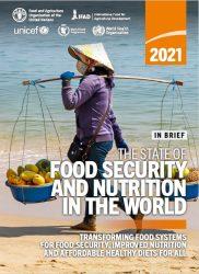 報告書『世界の食料安全保障と栄養の現状(原題:The State of Food Security and Nutrition in the World)』