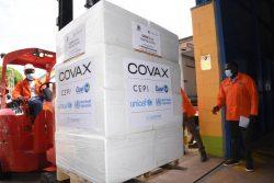 COVAXを通じて提供された新型コロナワクチンが、ウガンダの国立医療施設に届いた様子(2021年7月31日撮影)