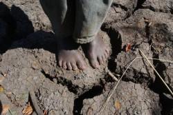 干ばつでひび割れた土の上に立つ男の子
