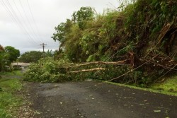 首都スバのタマビュア地域のサイクロンによる被害。(2月21日