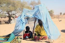 蚊帳と木の枝で作った家に座る親子。戦闘で自宅から避難した多くの人々がニジェールの非公式の居住地域に身を寄せている。
