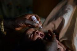 ナイジェリア北部でポリオワクチンを接種する乳児(ナイジェリア・カノ州、2016年3月撮影)※本文との直接の関係はありません。