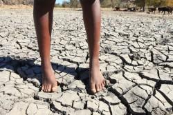 マタベレランド・サウスの村では、村民が水汲みに使用していたダムが干上がっていた。(2016年8月25日撮影)