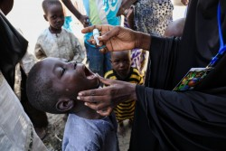 ポリオの予防接種を受ける6歳の男の子。(ナイジェリア・マイドゥグリ)