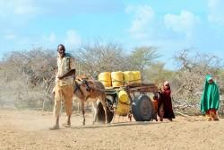 ケニア、ガリッサカウンティで一番近い給水所まで水を汲みに行く家族