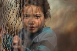 ダマスカスの農村地帯でフェンスをつかむ男の子(2017年2月9日撮影))※本文との直接の関係はありません。