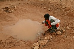 A boy drinks from a small pool that is the sole water source for the Bulla Maki settlement in North-Eastern Province. The settlement, created by Kenyans of Somali origin who have been displaced by the drought, is four months old. Approximately 300 people, including 123 children, have moved to the area to be near food aid.  In April 2006 in Kenya, children continue to face disease and starvation due to a severe drought in the region. UNICEF's Child Alert on the Horn of Africa is the third in a series of reports that documents the effects of crisis situations on children. The report, to be released on 15 May, warns that 40,000 children throughout the region may die of malnutrition by the end of the year. Two years of failed rains in Djibouti, Eritrea, Ethiopia, Kenya and Somalia have devastated the lives of 16 million people. Nomadic pastoralists, who lose their sole source of food and income when their animals die, are especially at risk. As parents migrate in search of water and pasture for livestock, children leave school. Recent rainfall, while providing immediate relief, has also increased the risk of disease and hampered relief efforts. UNICEF, working with Governments, NGOs, the World Food Programme and other UN partners, is supporting mobile feeding, health and education programmes as well as the provision of safe water and sanitation.