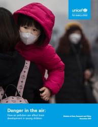 『大気汚染の危険:子どもの脳の発達に及ぼす影響(原題:Danger in the Air: How air pollution can affect brain development in young children)』