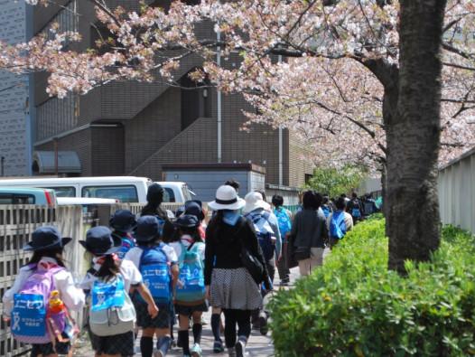 桜の花びらが舞うなか、笑顔で歩く参加者の姿が多くありました。