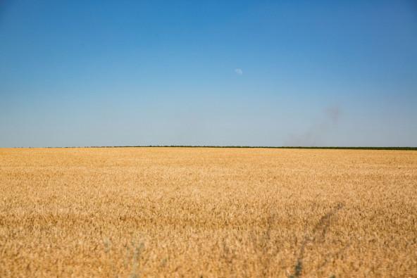 ウクライナ東部移動中の風景(ドネツク州)。
