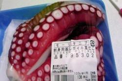 モーリタニアを意外と身近に感じる日本のスーパー