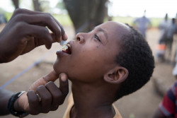 April 4, 2019. NHAMATANDA, MOZAMBIQUE: A boy receives the vaccine for cholera at an accommodation centre in Nhamatanda. UNICEF WASH Specialist Julien Graveleau and his team visited several accommodation centres in the Dondo and Nhamatanda districts. Picture: UNICEF/James Oatway.