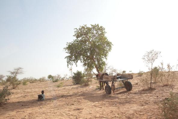 この乾燥した大地に、間もなく雨季がやってくる。雨の量は、数十年前に比べて劇的に減り、降り方も不安定になったという。