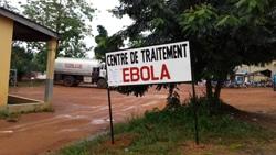 ギニア:最初の感染者とされる2...